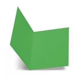 Favini A50D664 Verde cartella